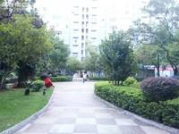 师院旁 盛世庭园 精装修 单身公寓 随时看房