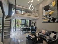 临岸SOHO.精装跃层公寓 河湖景观 一手现房 精装交付 一室 两室 随时看房
