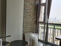 红星国际LOFT单身公寓 八楼 42平 全新装修 1300元 随时看房!