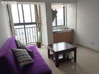 市中心 一小四中对面 极中心 带家具 单身公寓 1100一个月