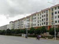 师院附属中学 5楼 精装 4居室130平 90万 警苑小区 流水停车 急售