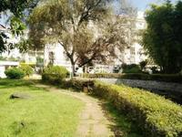 北苑聂耳广场玉湖苑2楼98平米3室出售