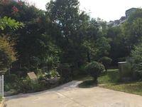 北边 红龙路 田和山水小区 联排别墅带车库带花园 均价低