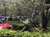 明珠路 公交公司 精装修好房 带家具
