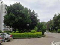 好房!一小附近聂耳路会堂旁省烟科所精装修南北通透好停车绿化好