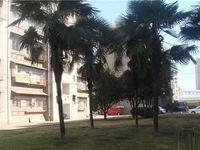 实验中学旁印刷厂生活区5楼端头房出售、停车方便
