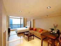 全新模式首创共享公寓新天地35万可贷款不限购仅售10套