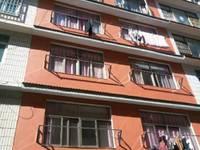 出租其他小区 中心城区 18平米300元/月住宅