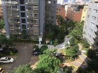 彩虹桥水果市场旁边 玉带路处理违章右边40.7平米1室1厅1卫1000/月简装