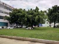 南边福禄瑞园裕达华府旁 二医院生活区好房出售 带围院 停车方便采光好 中介费打折