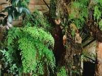 玉龙花园:复式楼,豪装,带车库,仅售236万