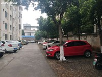 桂山路上的精装两室楼梯房 旅游局停车方便 看房方便