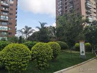 都市经典 1室41平精装单身公寓 户型方正 售价24万