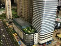 市中心新天地 政府持股 2层楼临街商墅出售 今年年底交房可贷款