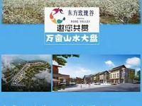 20万 投 云南泸西 东方玫瑰谷 国家4A级景区40平商铺