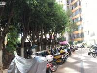 三小珊瑚苑旁 兰苑洋房 大平层 精装修178平4室 拎包入住停车方便 好吃街对面