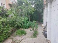 大营街双拼别墅 惊爆价366万 带200平米大花园 看房方便