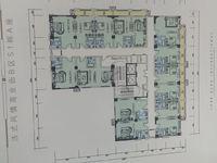 红星天悦单身公寓面积31至77平可更名,品质住房手慢无