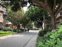 桂山路儿童医院对面 烟厂F区单开门黄金三楼 房东诚心出售看房随时方便,