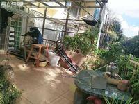 山水佳园 铭德上居 精装房 1楼 带花园 诚心出售 性价比高