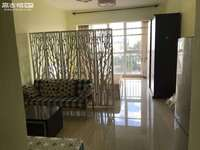 环山路精装公寓 盛世庭院精品公寓出售