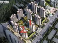 北大资源 颐和翡翠府143²,端头房,带入户花园,热卖户型,约你团购