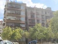 出租其他小区 中心城区 3室2厅1卫70平米1000元/月住宅