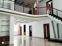 出租新世纪花园5室2厅2卫300平米2000元/月住宅