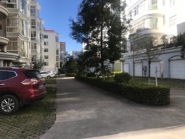 树蕙园高品质小区 精装四室 带24平车库急售 小区环境优美 绿化覆盖率高居住舒适