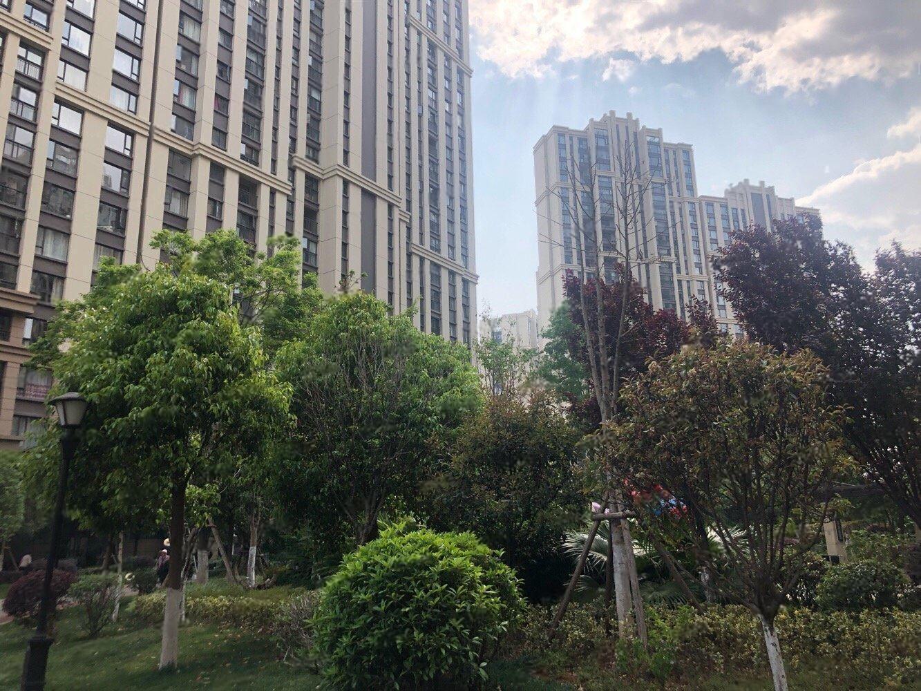 聂耳广场州大河旁红星国际单身公寓带家具家电出租