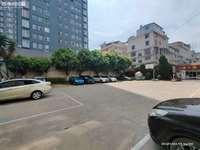 地税局 三小 明珠路旁 三楼 精装两室 停车非常方便 刚需首选