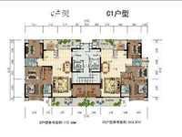 南边一手楼盘壹城花园大平层162-206平,单价5980起 一梯一户